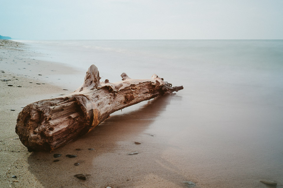 Lake Michigan Drift wood